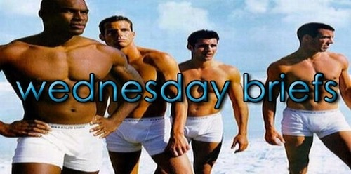 Wednesday Briefs Header